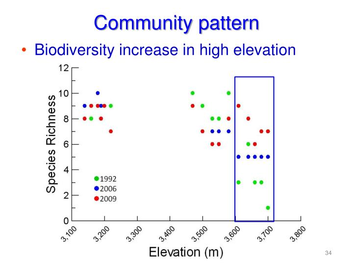 Community pattern
