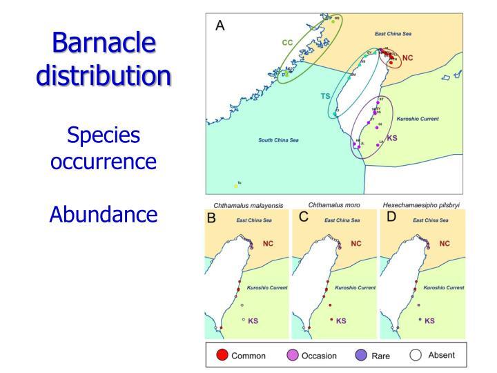 Barnacle distribution