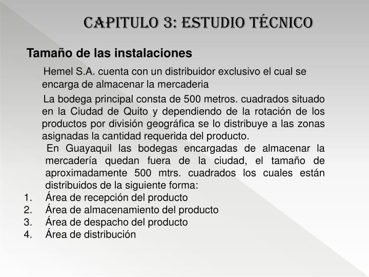 CAPITULO 3: estudio técnico
