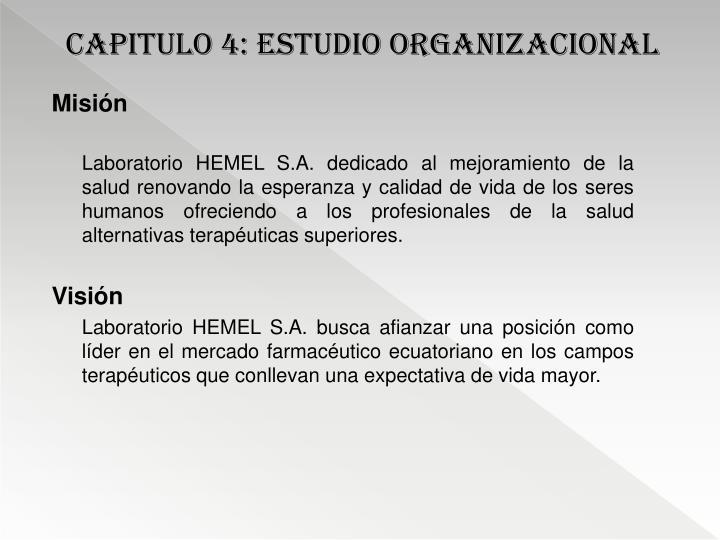 CAPITULO 4: estudio organizacional