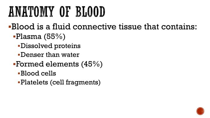 Anatomy of blood