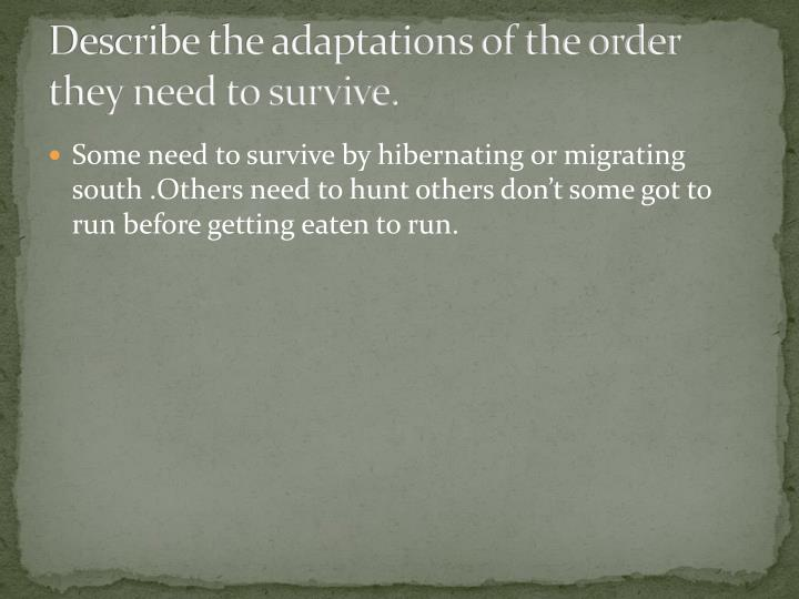 Describe the adaptations of the order they need to survive.