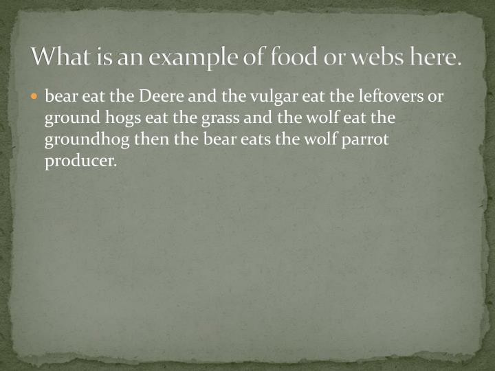 What is an example of food or webs here