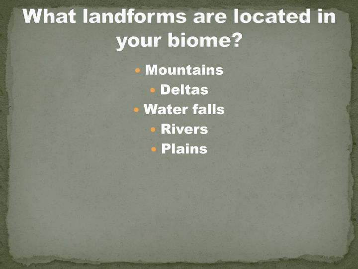 What landforms are located in your biome?