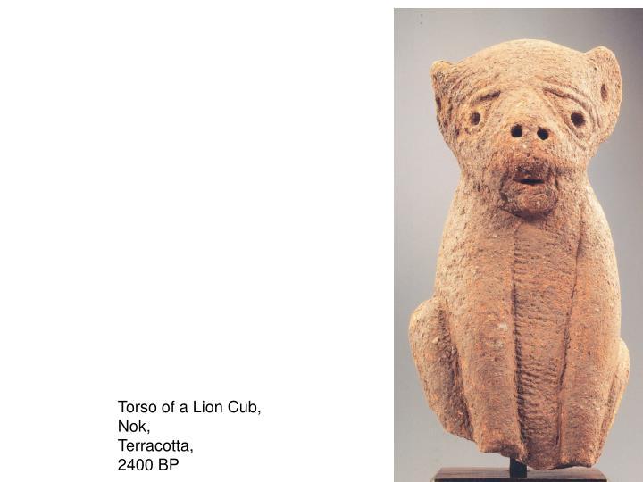 Torso of a Lion Cub,