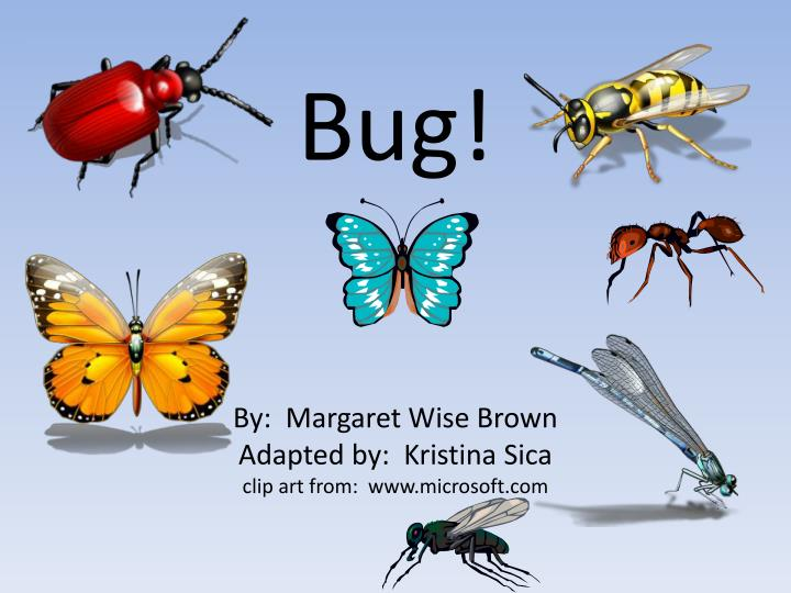 Bug by margaret wise brown adapted by kristina sica clip art from www microsoft com