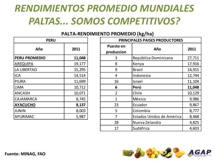 RENDIMIENTOS PROMEDIO MUNDIALES PALTAS... SOMOS COMPETITIVOS?