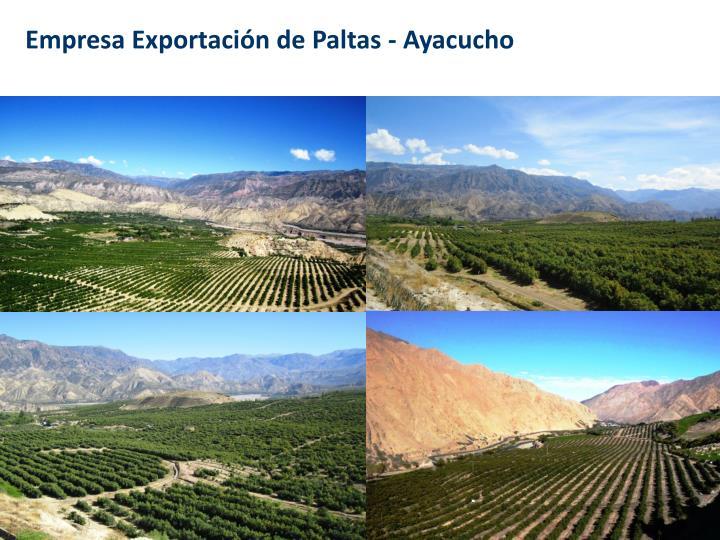 Empresa Exportación de Paltas - Ayacucho