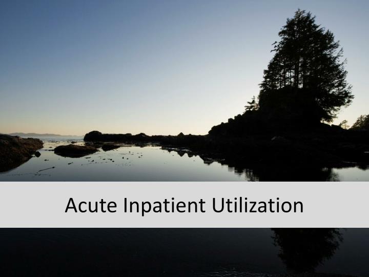 Acute Inpatient Utilization