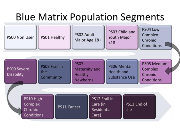 Blue Matrix Population Segments