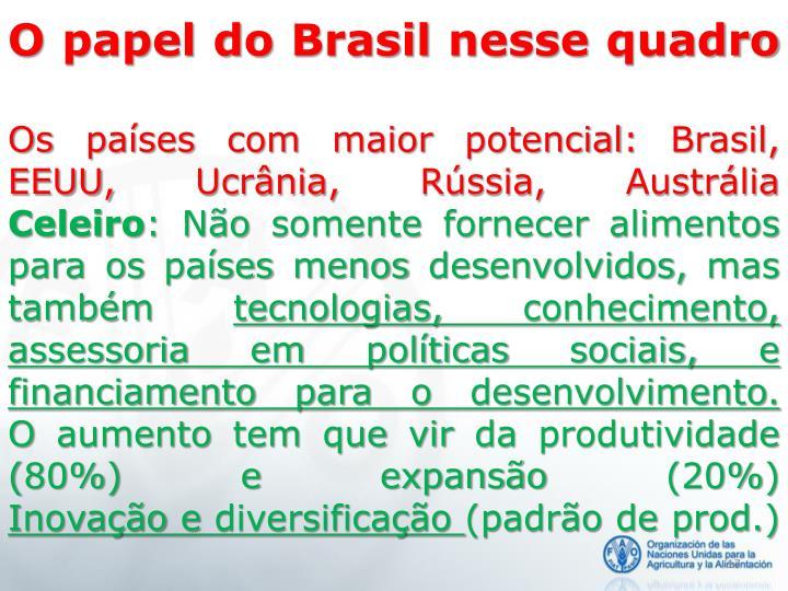 O papel do Brasil