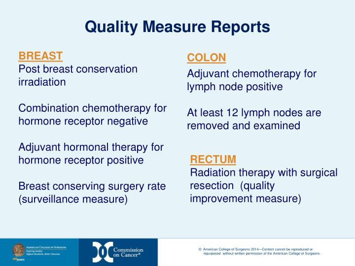 Quality Measure Reports