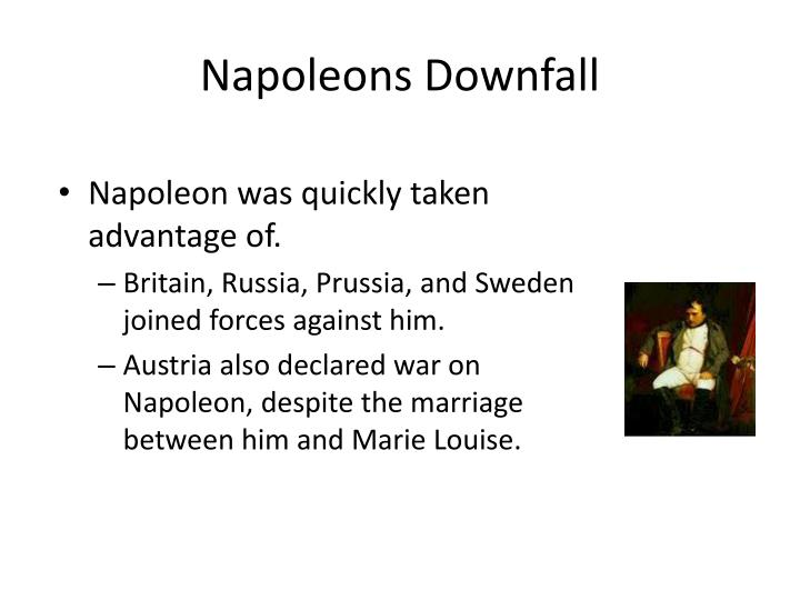 Napoleons Downfall