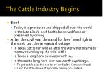 the cattle industry begins
