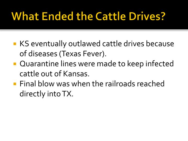 What Ended the Cattle Drives?
