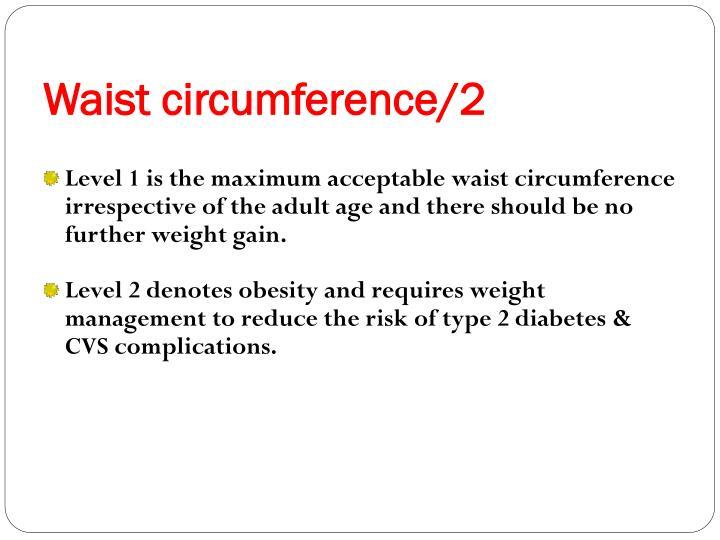 Waist circumference/2