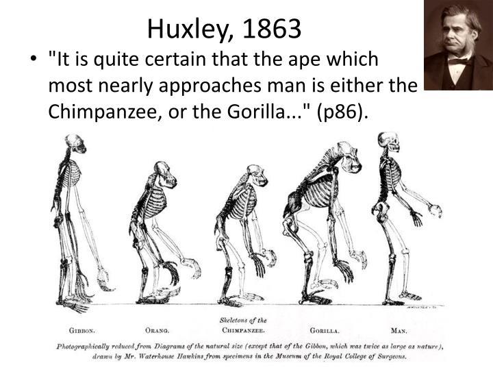 Huxley, 1863