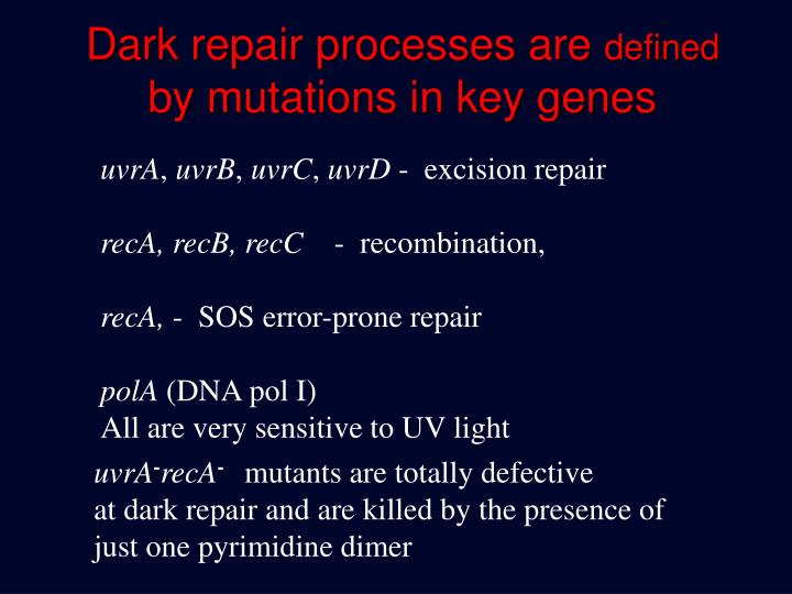 Dark repair processes are
