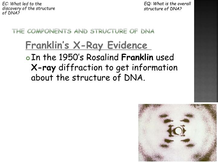 EC: What led to the discovery of the structure of DNA?