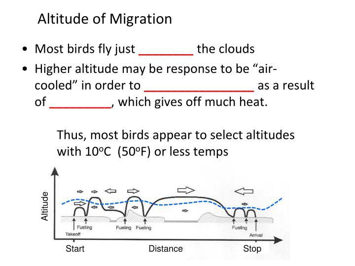Altitude of Migration