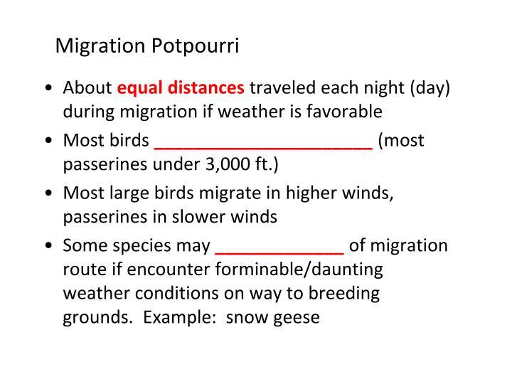 Migration Potpourri