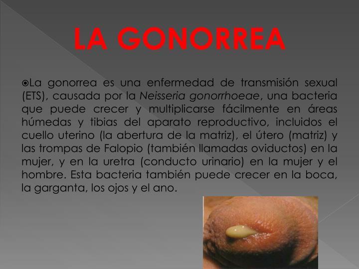 LA GONORREA