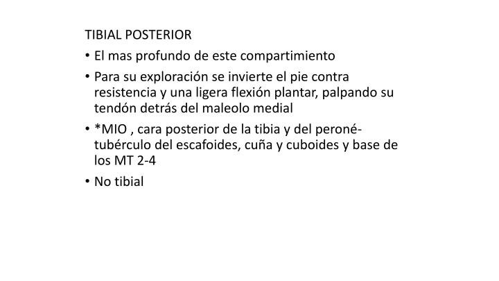 TIBIAL POSTERIOR