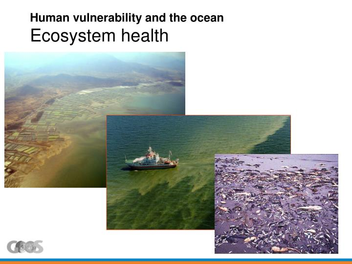 Human vulnerability and the ocean
