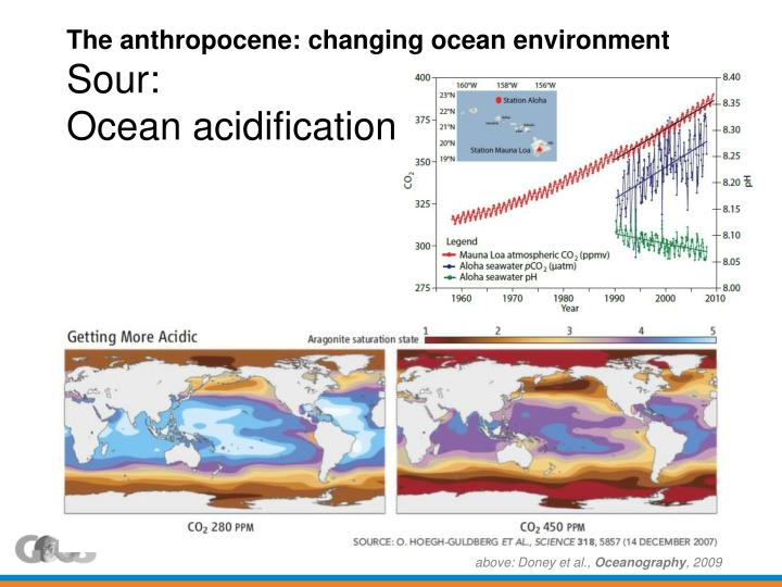 The anthropocene: changing ocean environment