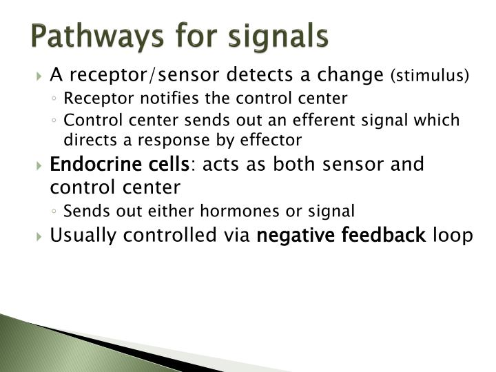 Pathways for signals