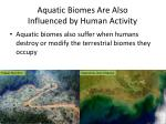 aquatic biomes are also influenced by human activity1