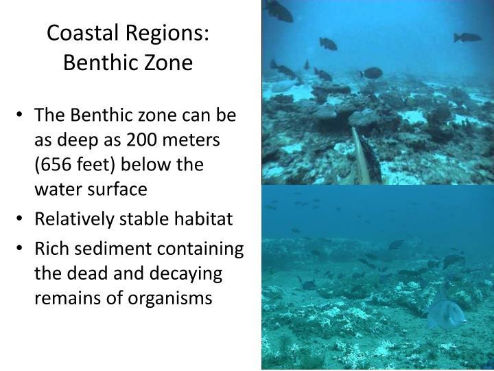 Coastal Regions: