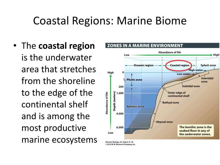 Coastal Regions: Marine Biome