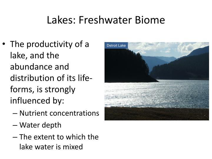 Lakes: Freshwater Biome