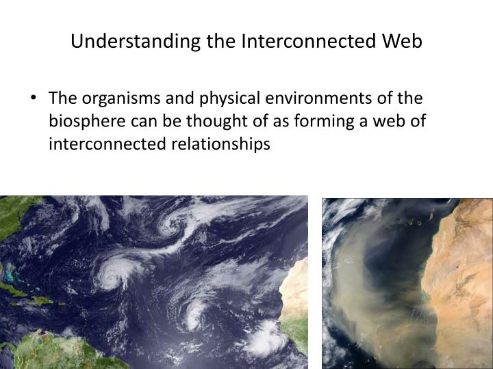 Understanding the Interconnected Web