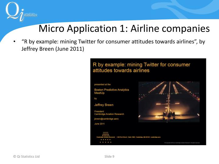 Micro Application 1: Airline companies