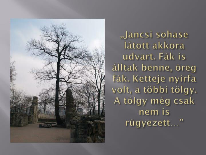 """Jancsi"