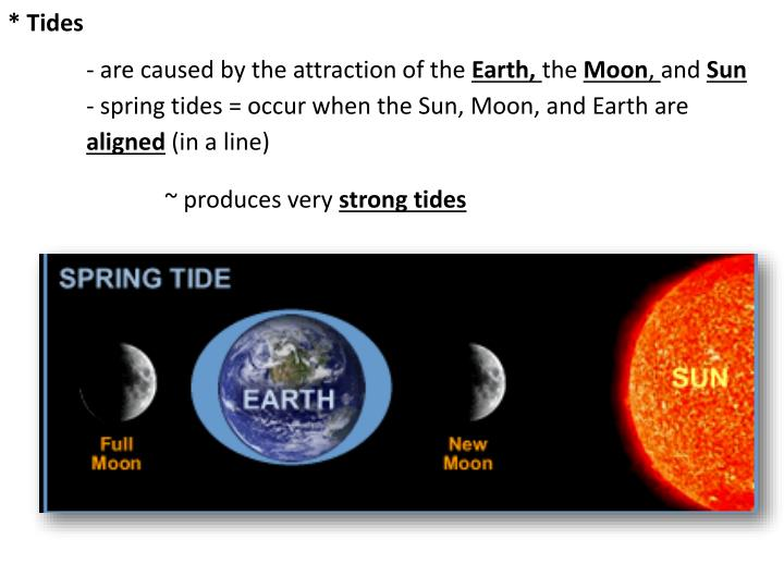 an overview of lunar tides The combined attraction of the moon and the sun generates tides on earth  calculating their effects is not as easy as it might seem, since we have to factor in  the.