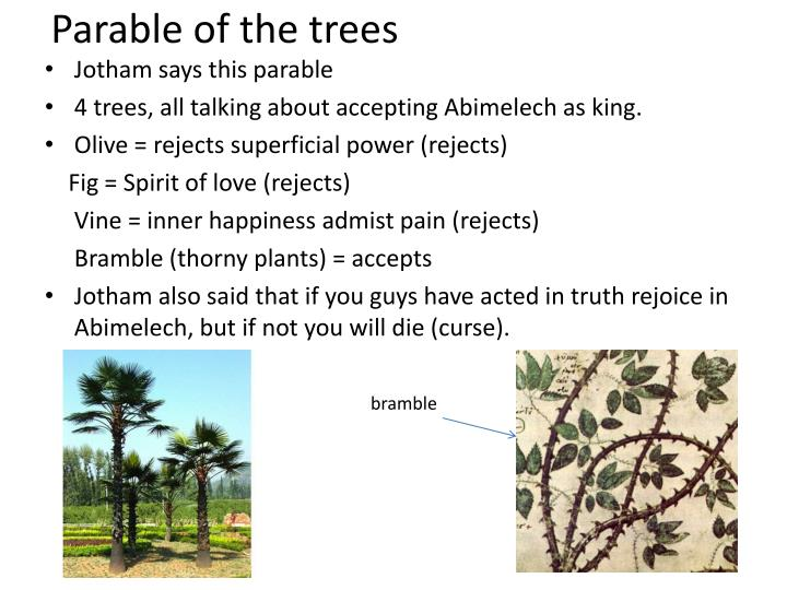 Parable of the trees