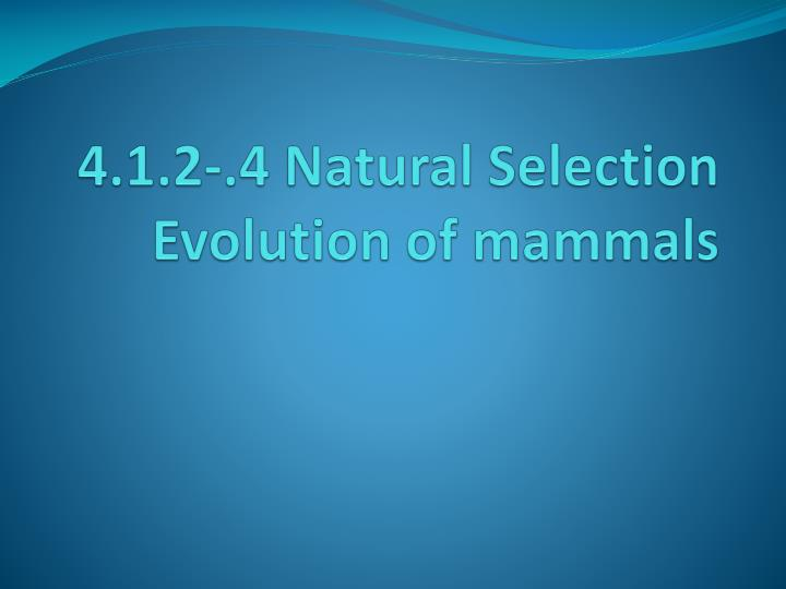 4.1.2-.4 Natural Selection Evolution of mammals