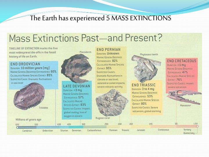 The Earth has experienced 5 MASS EXTINCTIONS