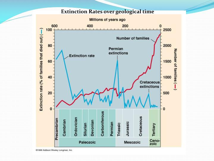 Extinction Rates over geological time