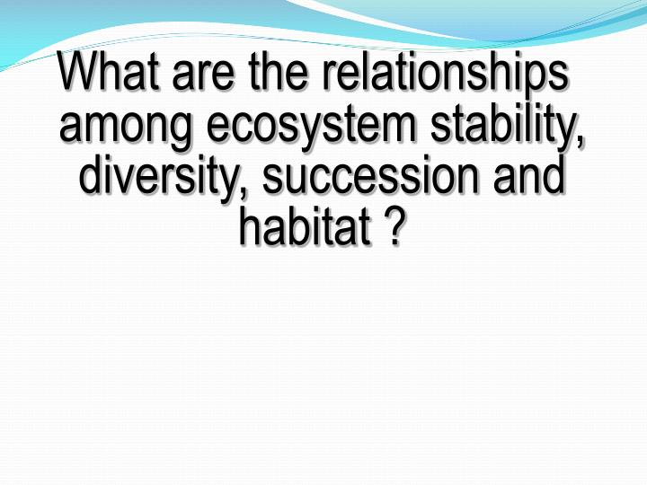 What are the relationships among ecosystem stability, diversity, succession and habitat ?