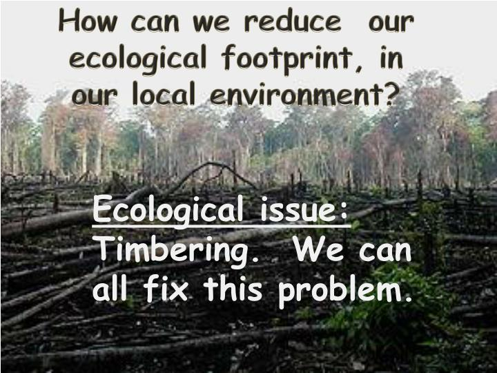 How can we reduce  our ecological footprint, in our local environment?