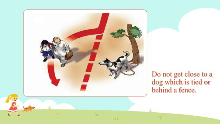 Do not get close to a dog which is tied or behind a fence.