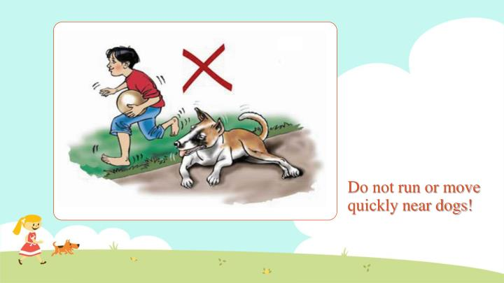 Do not run or move quickly near dogs!