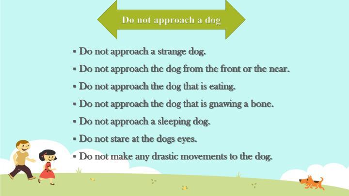 Do not approach a dog