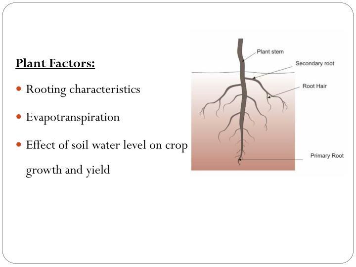 Plant Factors:
