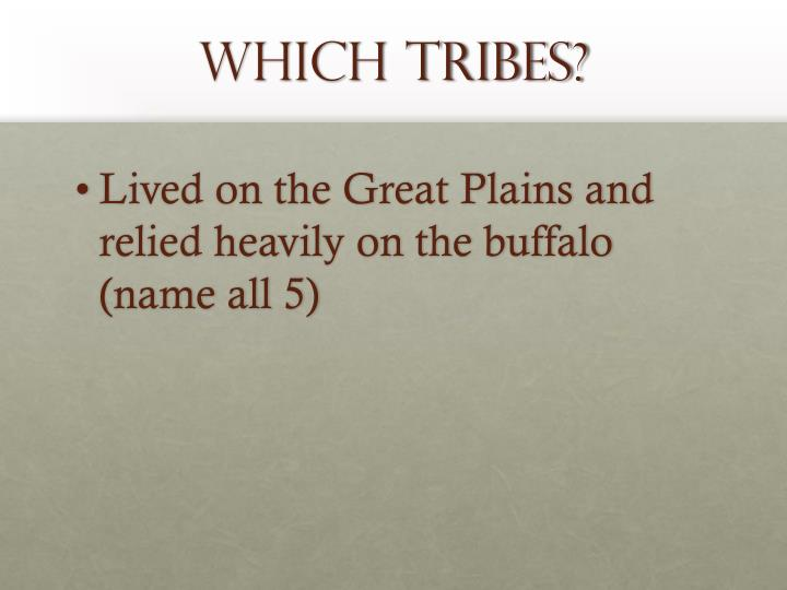 Which Tribes?