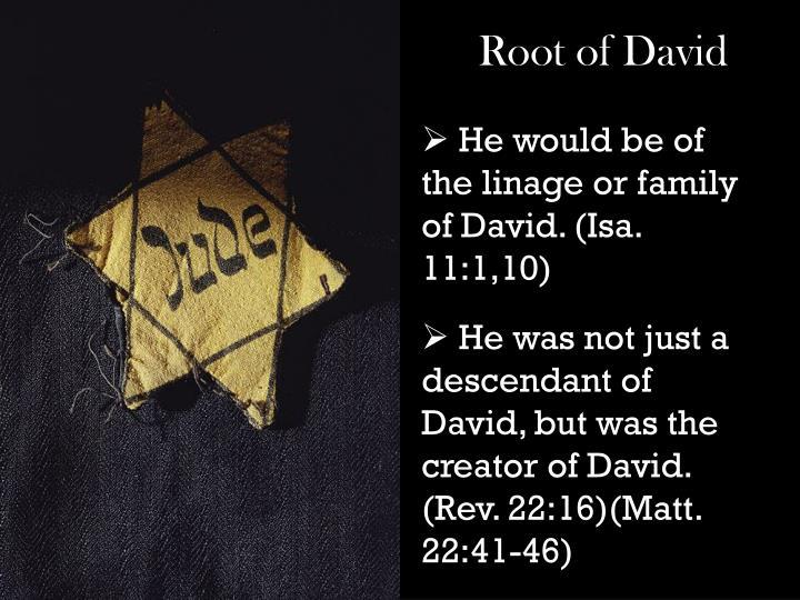 Root of David